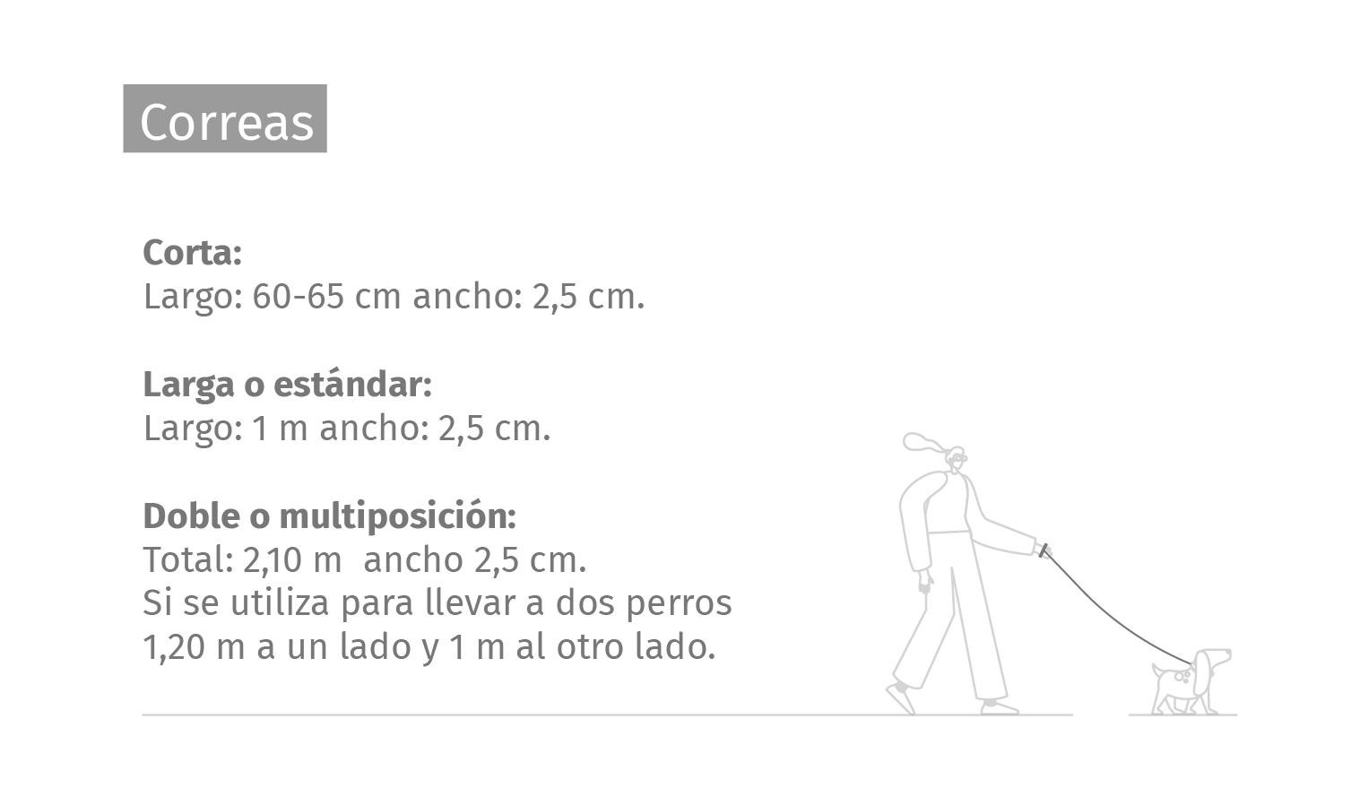 Correa Cuero Premium Clasic