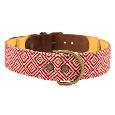 Mambo Dog Collar